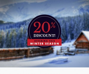 Christmas Discount! 20% OFF!!!