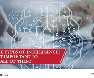 What are the Types of Intelligence? And why is it important to understand all of them!
